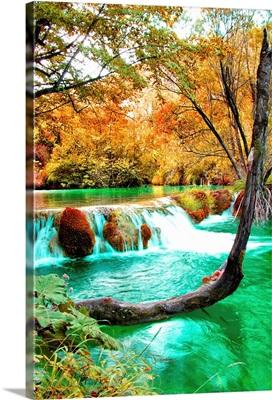 Autumn Scene, Croatia