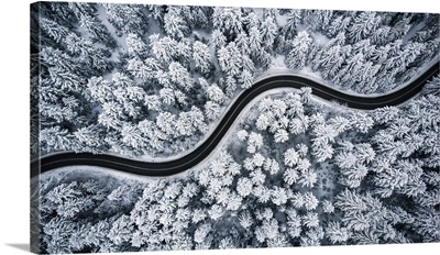 Curvy Windy Road In Snow Covered Forest