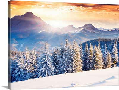 Fantastic evening winter landscape with dramatic overcast sky
