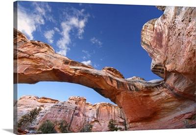 Hickman Natural Bridge Spans A Canyon At Capitol Reef National Park Of Utah