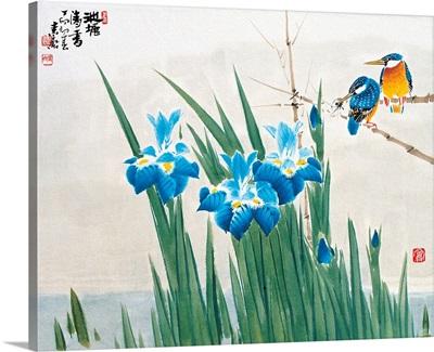 Irises and Kingfishers