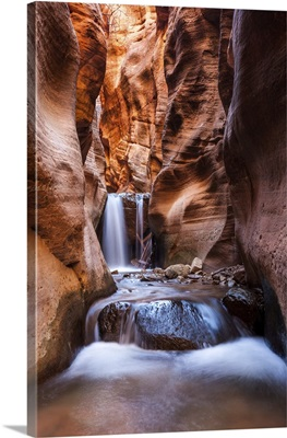 Kanarra Creek Slot Canyon Trail In Zion National Park