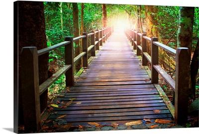 Perspective Of Wood Bridge In Deep Forest