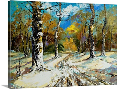 Road to a Winter Forest