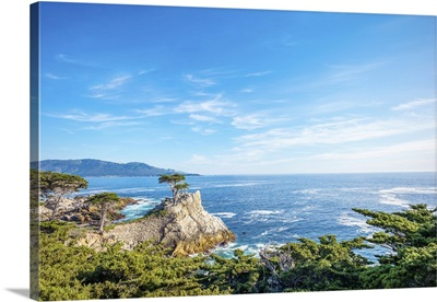 The Lone Cypress, Seen From The 17 Mile Drive, Pebble Beach, California