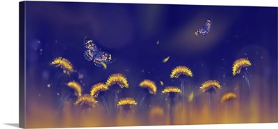 Yellow Bright Dandelions And Beautiful Butterflies On A Blue Background
