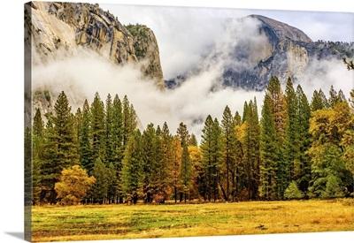 Yosemite National Park Valley At Cloudy Autumn Morning, California