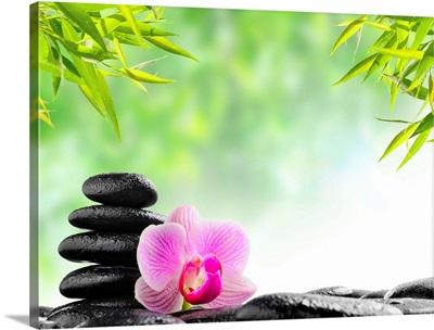 Zen basalt black stones and pink orchid