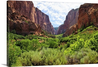 Zion National Park, View Through The Red Cliffs Of Kolob Canyon