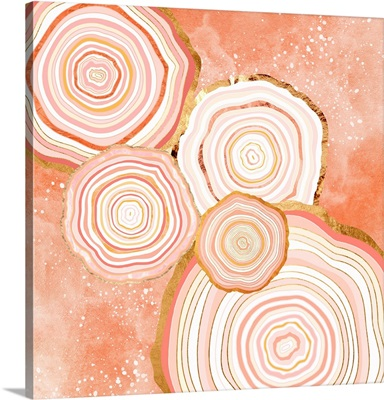 Coral Agate Abstract