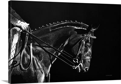 Equestrian Entering