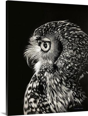 Owl In Profile