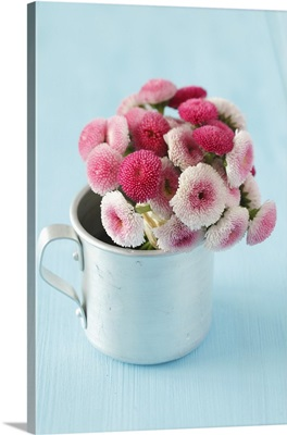A bunch of pink daisies in a tin cup