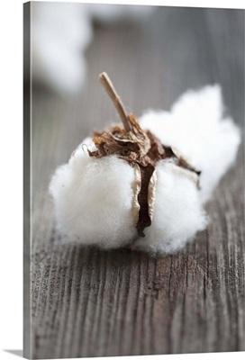 A bundle of cotton wool