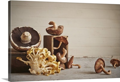 Assorted mushrooms on wooden surface including oyster, shiitake, and portabello