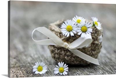 Basket of daisies