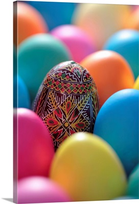 Coloured Easter eggs and one painted egg