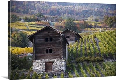 Former animal stalls in vineyard, Switzerland
