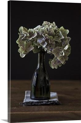 Hydrangea flowers in green bottle