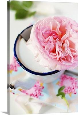 Pink rose in an enamel cup