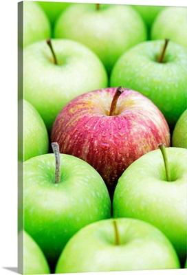 Red apple (Royal Gala) among Granny Smith apples