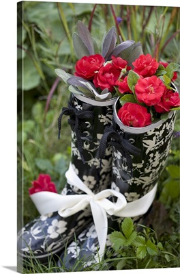 Red roses in rubber boots