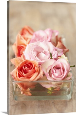 Roses in a glass bowl