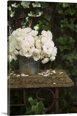 White roses in zinc bucket on vintage garden table