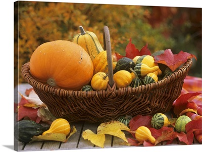 Wicker basket with pumpkin, squashes and gourds