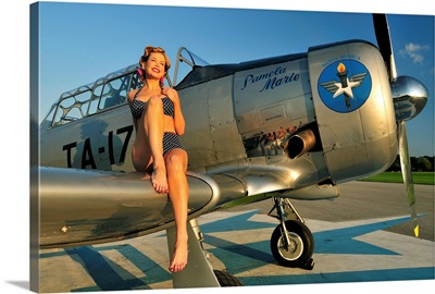 1940's style pin-up girl sitting on the wing of a World War II T-6 Texan