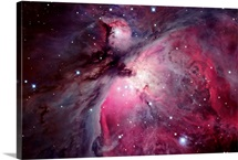 A close up of the Orion Nebula