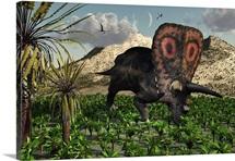 A lone Torosaurus dinosaur feeding on plants