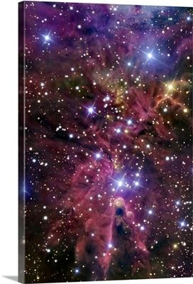 A stellar nursery located towards the constellation of Monoceros