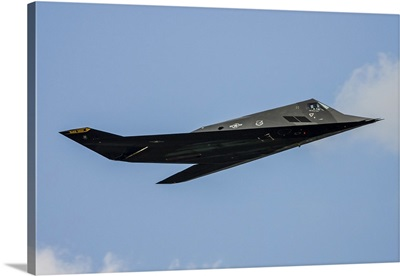 A U.S. Air Force F-117 Nighthawk
