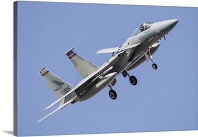 A U.S. Air Force F-15C Eagle