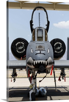 A US Air Force A-10 Thunderbolt II parked at Davis Monthan Air Force Base