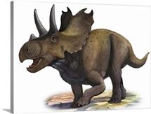 Agujaceratops mariscalensis, a prehistoric era dinosaur