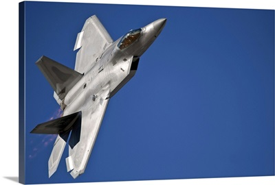 An F 22 Raptor aircraft performs during Aviation Nation 2010