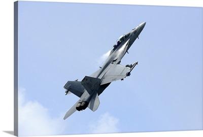 An F/A-18 Super Hornet of the U.S. Navy in flight