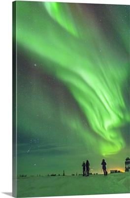 Aurora borealis with Taurus and Orion over Churchill, Manitoba, Canada