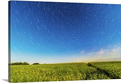 Circumpolar star trails over a canola field in southern Alberta, Canada