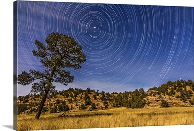 Circumpolar star trails over Mimbres Valley in the Gila National Forest, New Mexico
