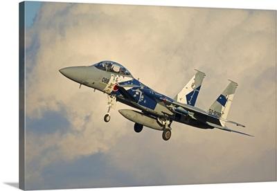 F-15DJ Eagle of the Japan Air Self Defense Force's Hiko Kyodatai aggressor squadron
