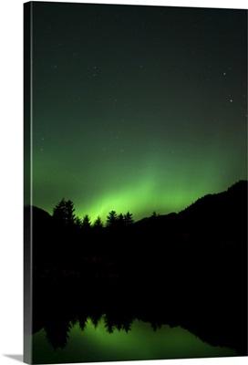Green Aurora above Kincolith River