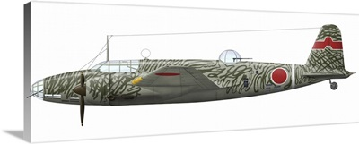 Mitsubishi Ki-21 bomber of the Imperial Japanese Army Air Service