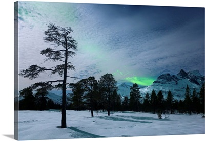 Moonlight and aurora borealis, Forramarka, Troms, Norway