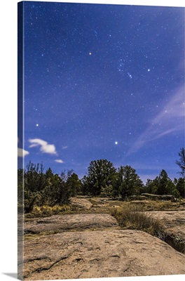 Orion and Sirius rising in the moonlight over Gila National Forest, New Mexico