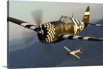 P-47 Thunderbolts flying over Chino, California