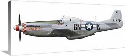 P-51D Mustang, nicknamed Baby Mine