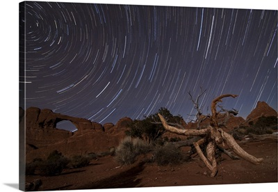 Star trails over Skyline Arch at Arches National Park, Utah